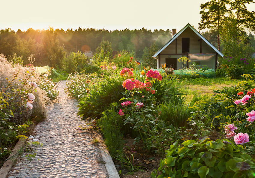Benefits of gardening: Path surrounded by bushes and flowers in large garden